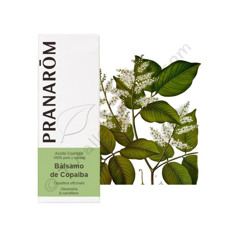 Aceite esencial de Bálsamo de Copaiba Pranarom