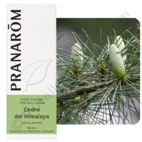 Aceite esencial de cedro del Himalaya 10 ml.