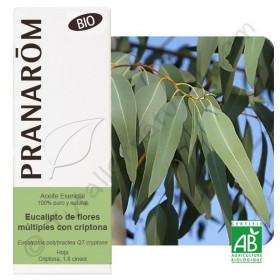 Aceite Esencial de eucalipto polybractea BIO 10ml. (Pranarôm)