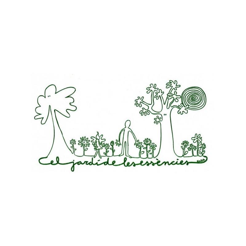 Chicory 10 ml.