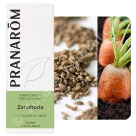 Aceite esencial de zanahoria 5 y 30 ml.