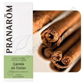 Aceite esencial de canela de Ceylán (corteza) 5 ml.