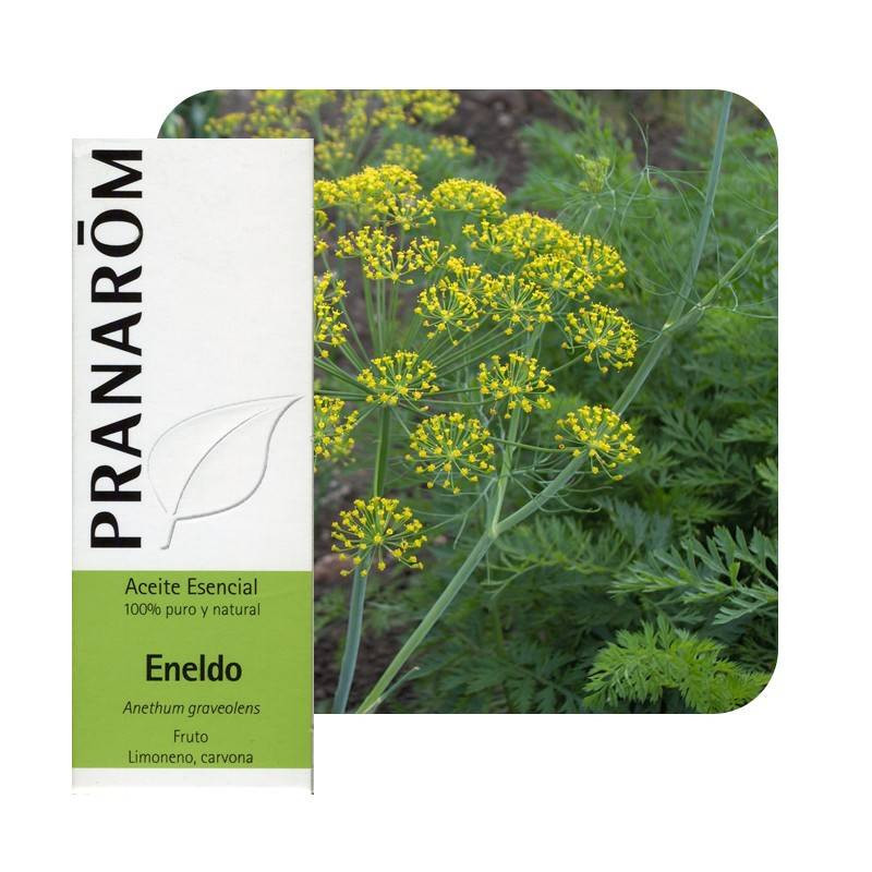 Aceite esencial de Eneldo Pranarom