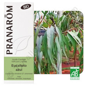 Aceite esencial de eucalipto azul o citriodora BIO 10 y 30 ml.