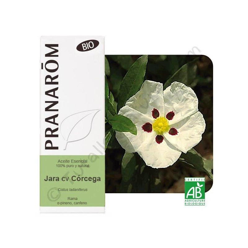Aceite esencial de Jara BIO Pranarôm
