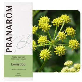 Aceite esencial de levístico 5 ml.