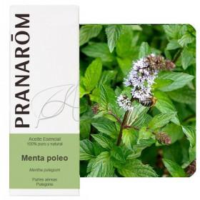 Aceite esencial de menta poleo 10 ml.