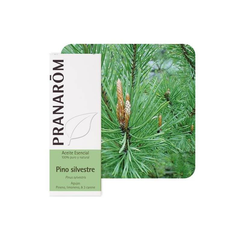 Aceite Esencial de Pino silvestre 10 y 30 ml.