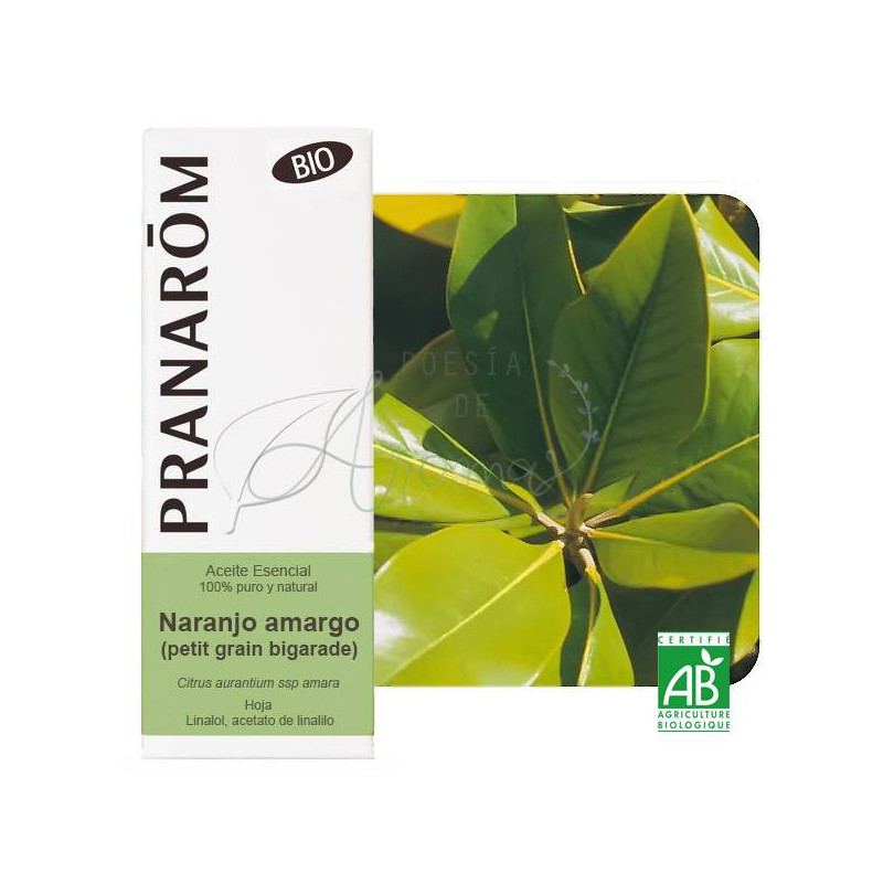 Aceite Esencial de Petit Grain o naranjo amargo BIO 10 ml. (hoja)