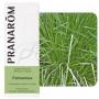 Aceite Esencial de Palmarosa 30 ml. (Pranarôm)