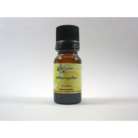 Aceite Esencial de alerce silvestre (agujas) BIO 2 y 5 ml.