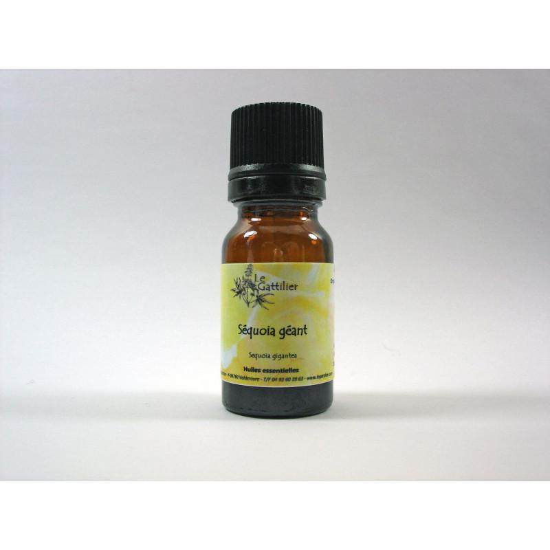 Aceite esencial de secoya gigante BIO 5 ml.