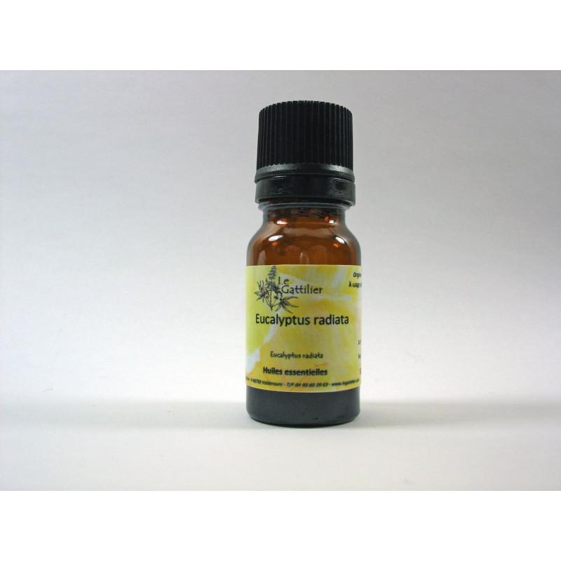 Aceite esencial de eucalipto radiata silvestre BIO 5 y 10 ml.