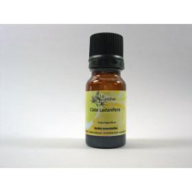 Aceite esencial de jara silvestre BIO 2 y 5 ml.
