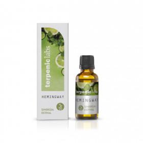 Sinergia Hemingway 30 ml para difusor