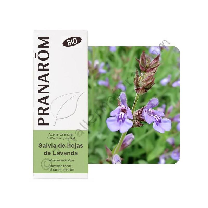 Aceite esencial BIO de salvia de hojas de lavanda o de España 10 ml. - Pranarom