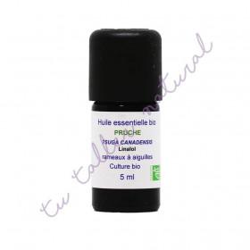 Aceite esencial de tsuga de Canadá BIO 5 ml.