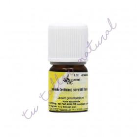 Aceite esencial de té de labrador 2 ml. - Le Gattilier